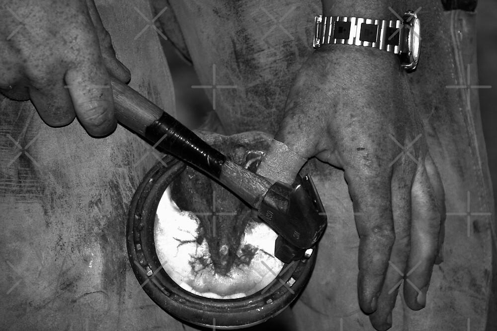 Horse Shoe by Angela E.L. Clements