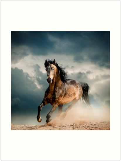 Galoppierendes Pferd von DV-LTD