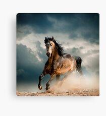 Galoppierendes Pferd Leinwanddruck