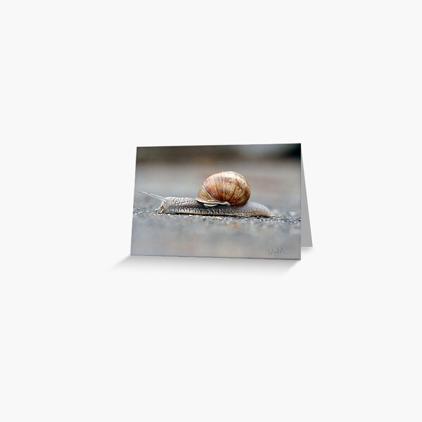 Snail on a Mission Greeting Card