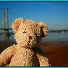 George The Teddy Bear at Humber Bridge, England by weallareone