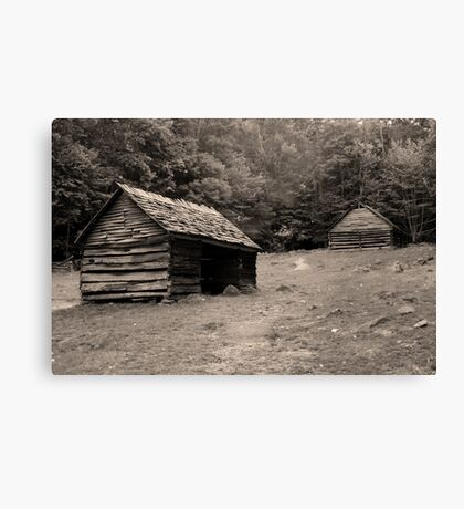 Early Morn Canvas Print