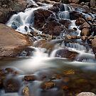 Aluvial Fan - Rocky Mountain National Park by Stephen Beattie