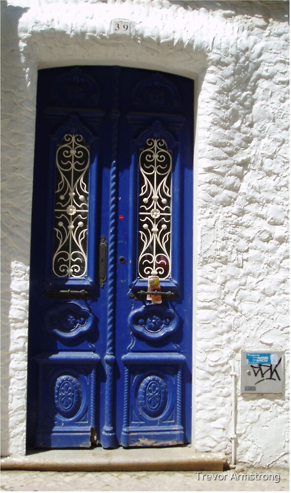 Blue Door by Trevor Armstrong