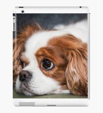 Cuddly Toy iPad Case/Skin