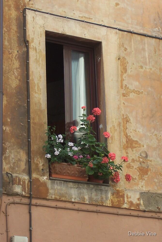 Roman Window by Debbie Vine