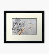 Pencil Drawing Creative  Framed Print