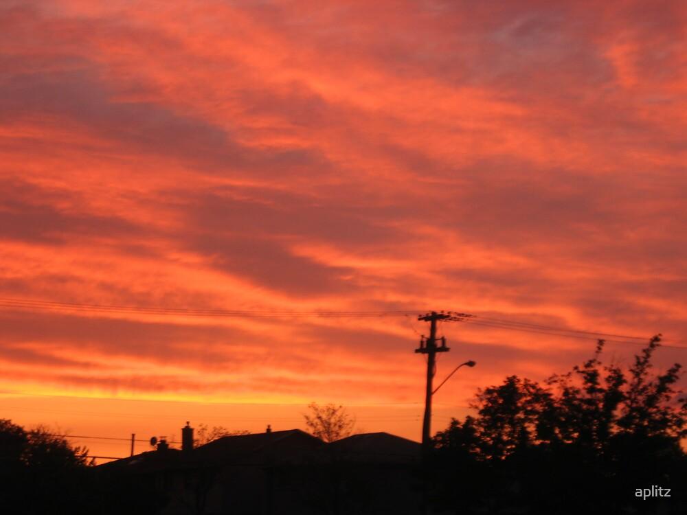 ORANGE SUNSET by aplitz