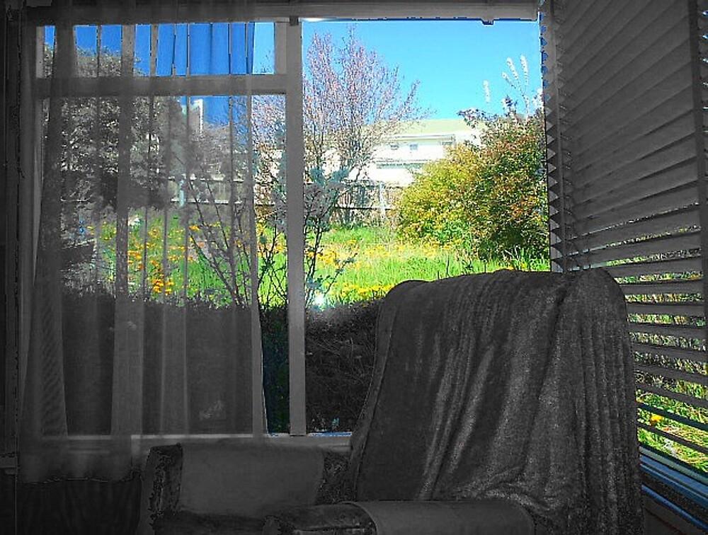 open window by CarlyLee