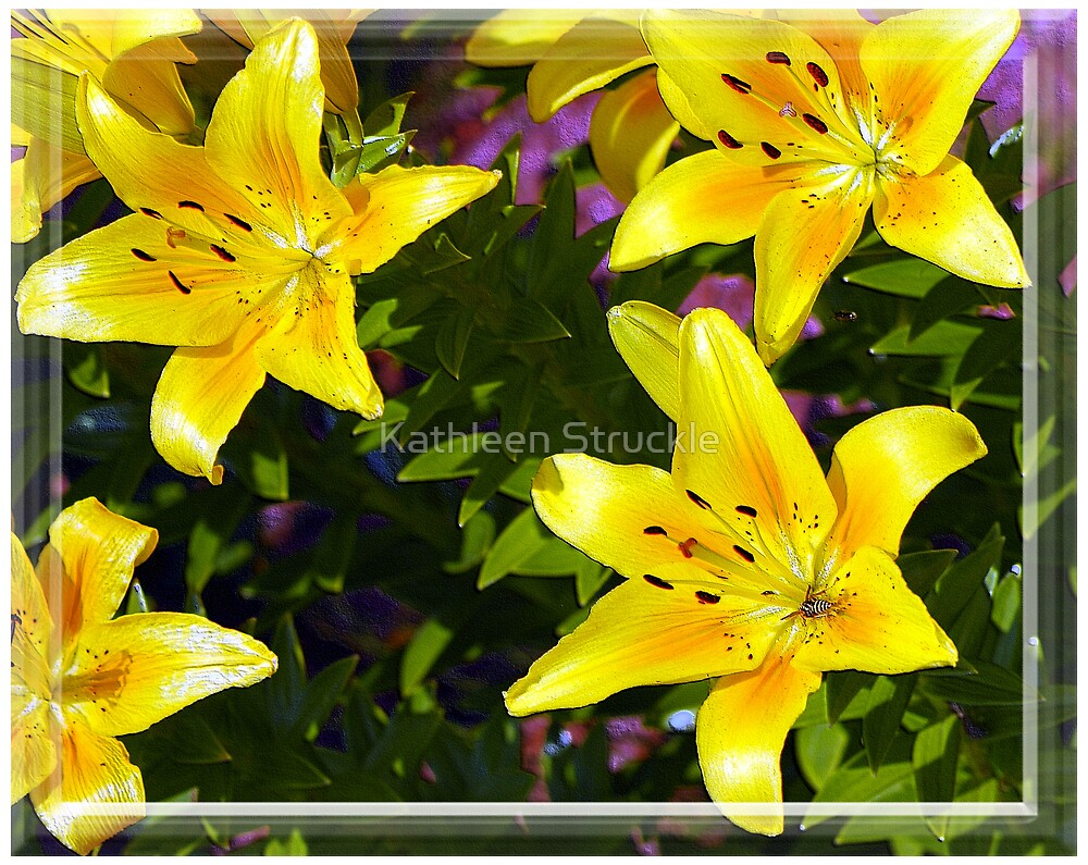 Happy Flowers by Kathleen Struckle