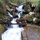 water fall by Damian7