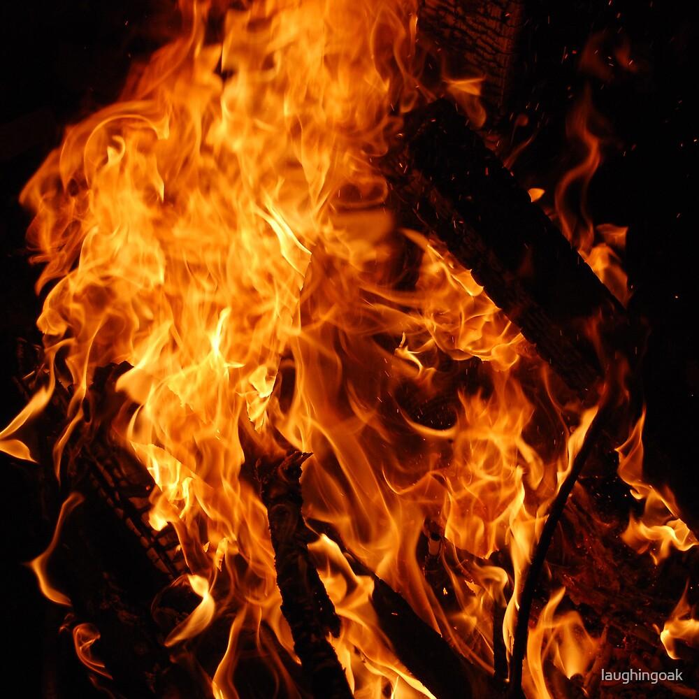 Fire #1 by laughingoak