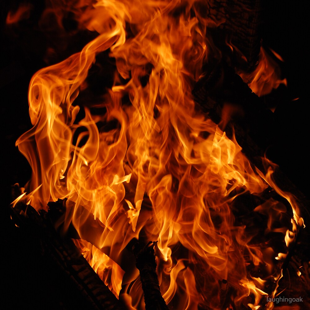 Fire # 4 by laughingoak