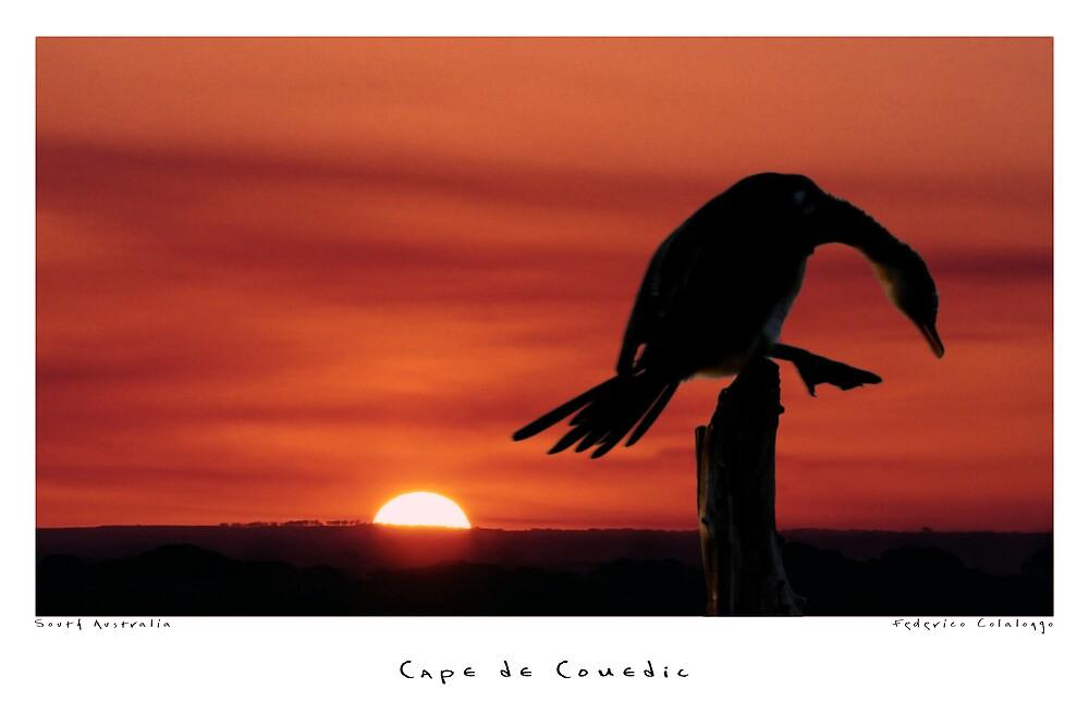 Cape de Couedic by Federico Colalongo