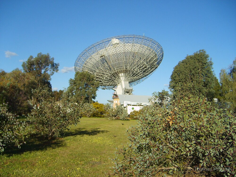 Dish Discovery by Thomas Prowse