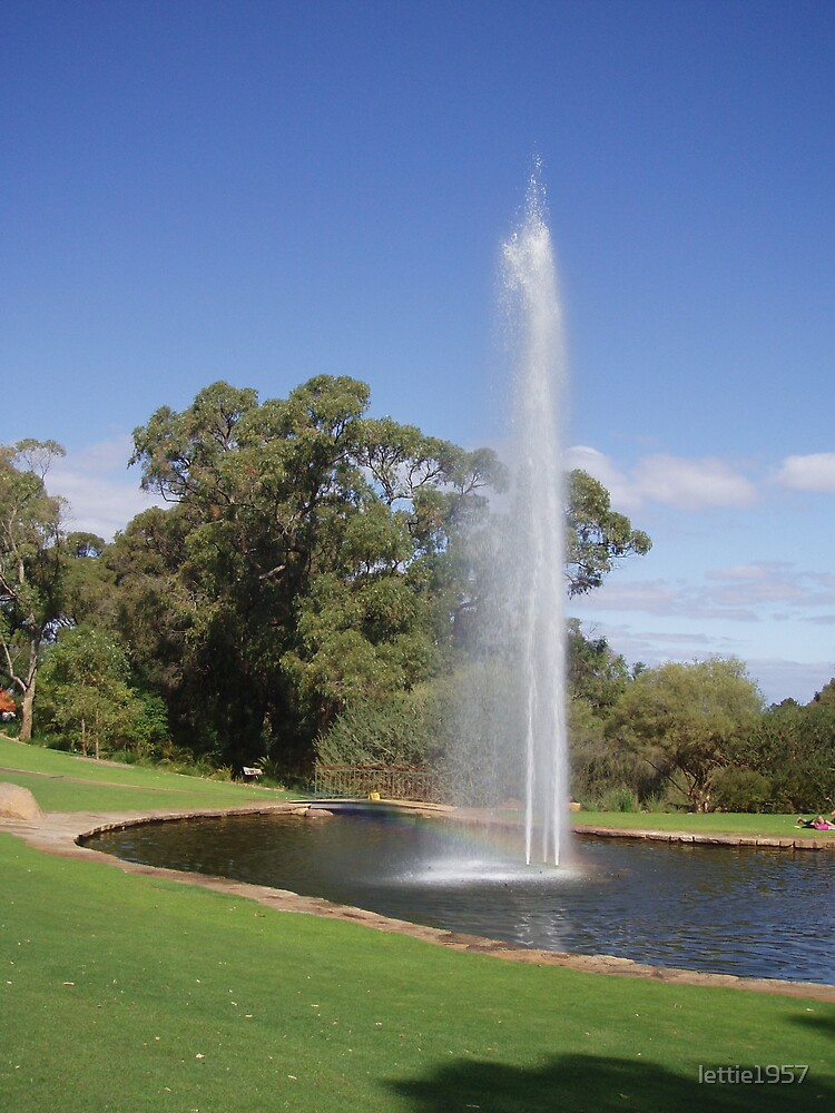 Fountain at Kings Park  by lettie1957