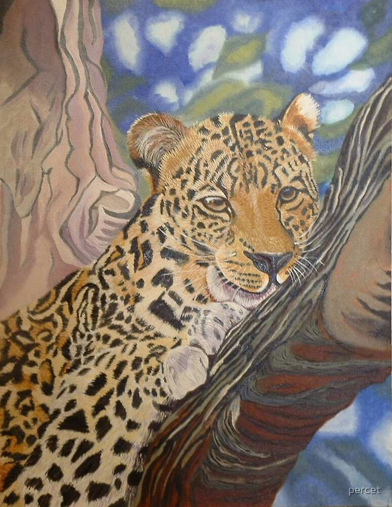 leopard in waiting by percet