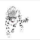 Snow Leopard by carol brandt
