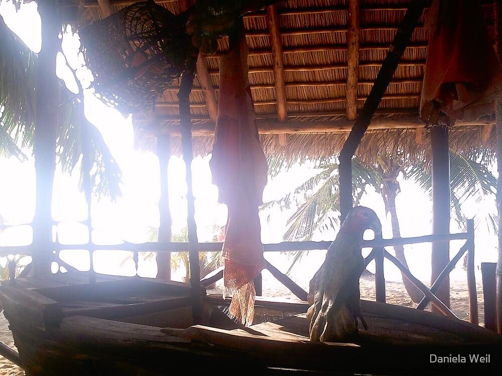 Carribean feelling by Daniela Weil