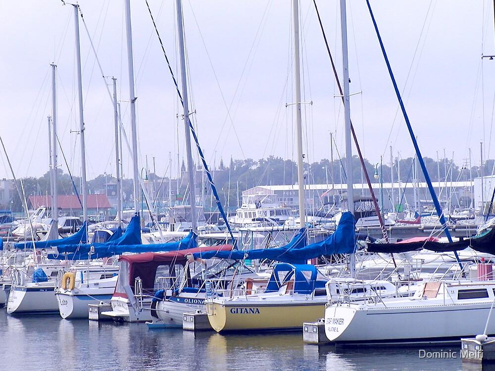 Racine Wisconsin USA Harbor Lake Michigan by Dominic Melfi
