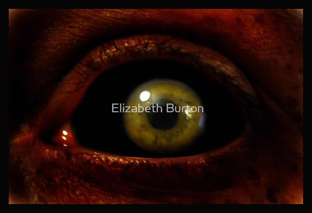 EVIL EYE by Elizabeth Burton