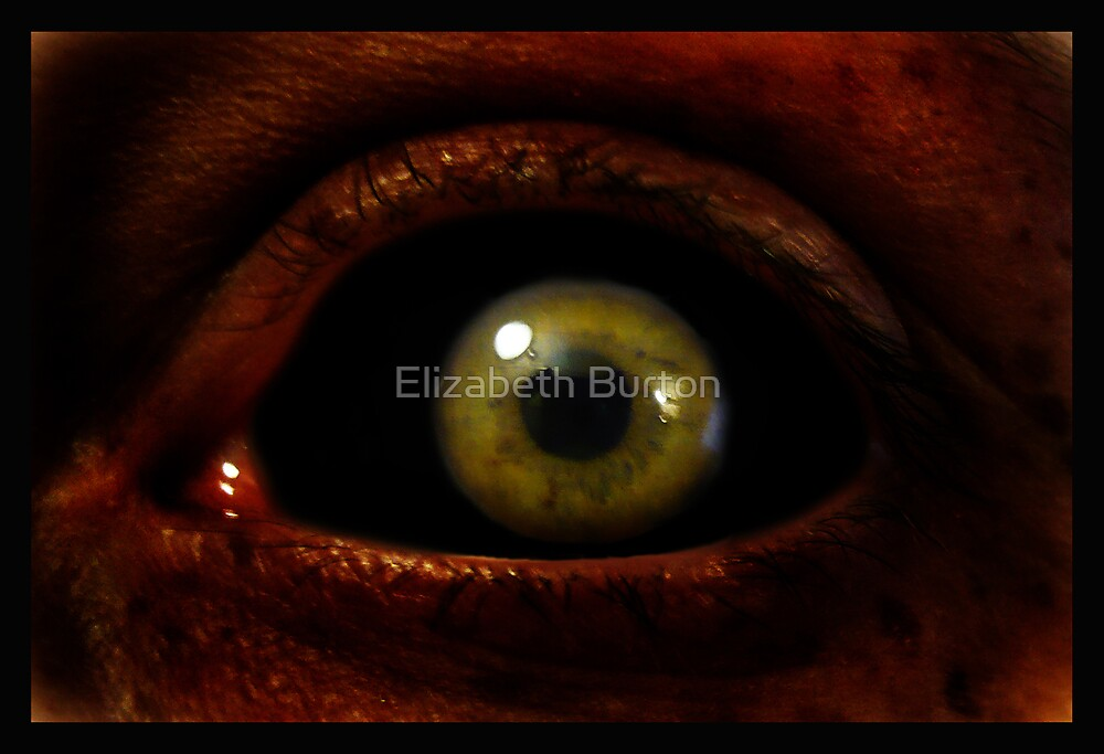 EVIL EYE by Elizabeth Burton