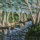 Hill Country Water by Carole Boyd