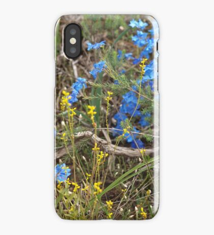 Lechenaultia and Branch iPhone Case