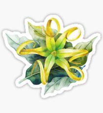 Watercolor ylang ylang Sticker