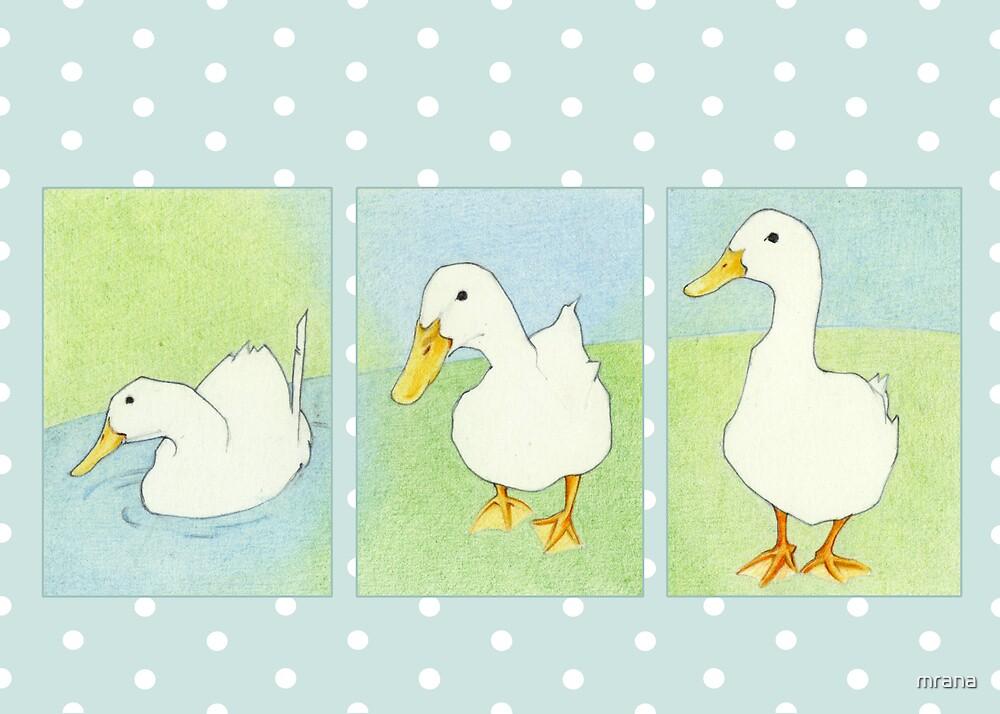 Three Ducks Dots by Mariana Musa