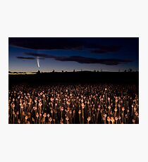 Comet McNaught Photographic Print