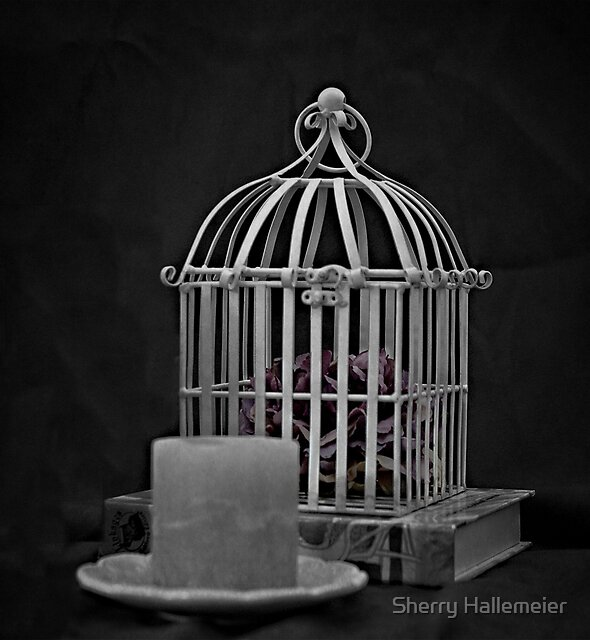 Feeling Caged In... by Sherry Hallemeier