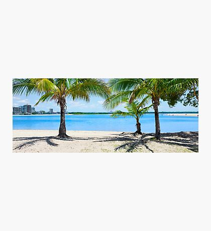 Palm Paradise at Cotton Tree Photographic Print