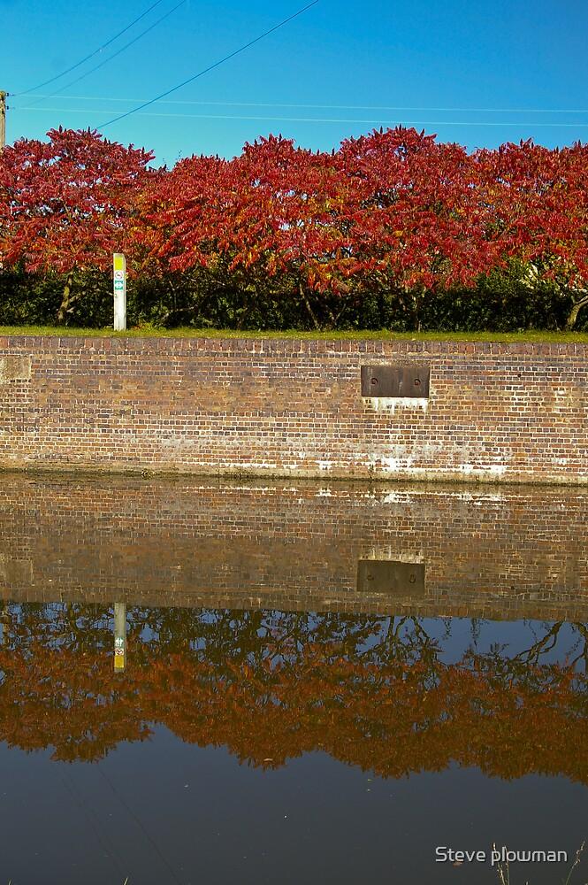 Autumn by Steve plowman