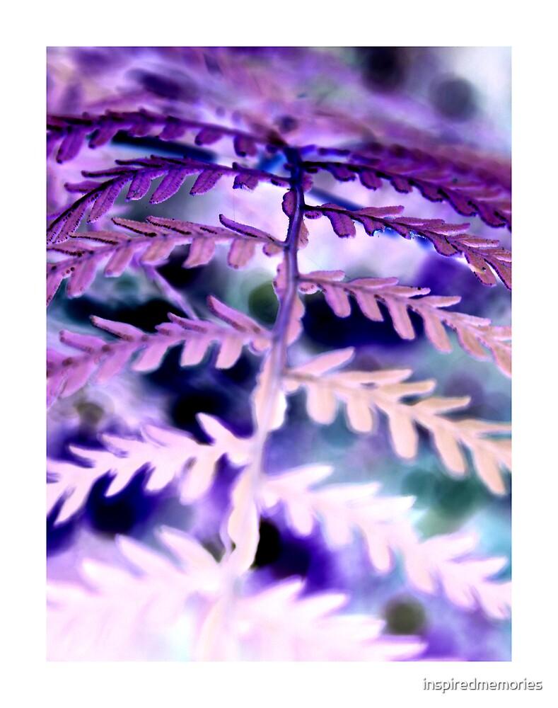 purple... by inspiredmemories