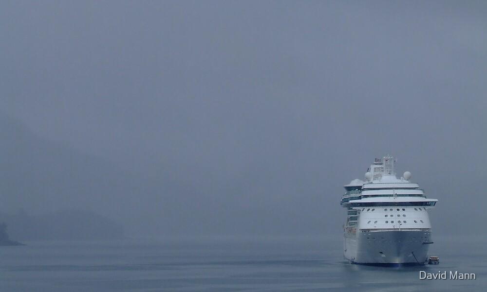 Cruiseship and Mist by David Mann