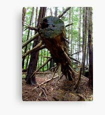 Spiked Tree Trunk, vertical Canvas Print