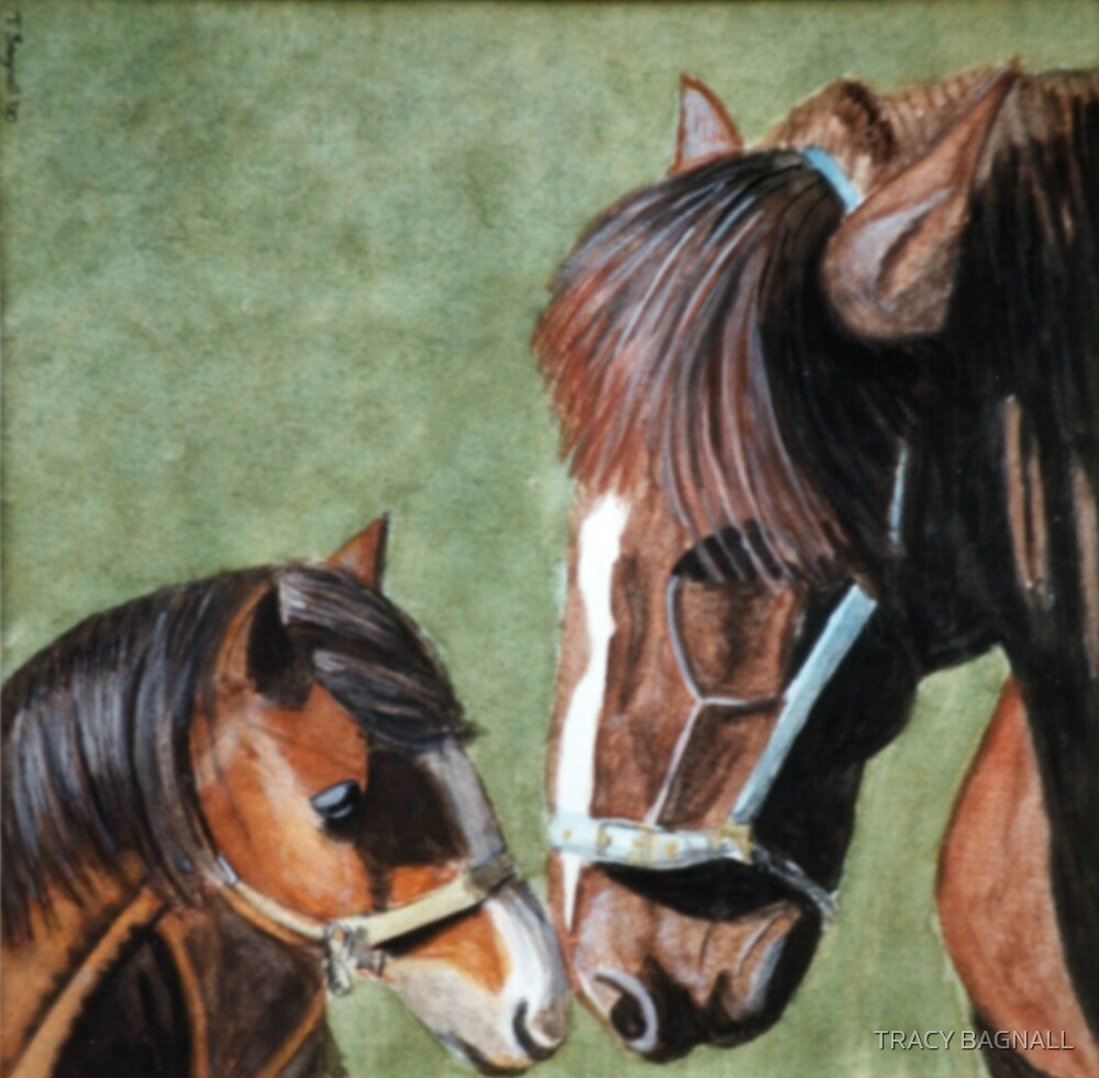 horse and foal by TRACY BAGNALL