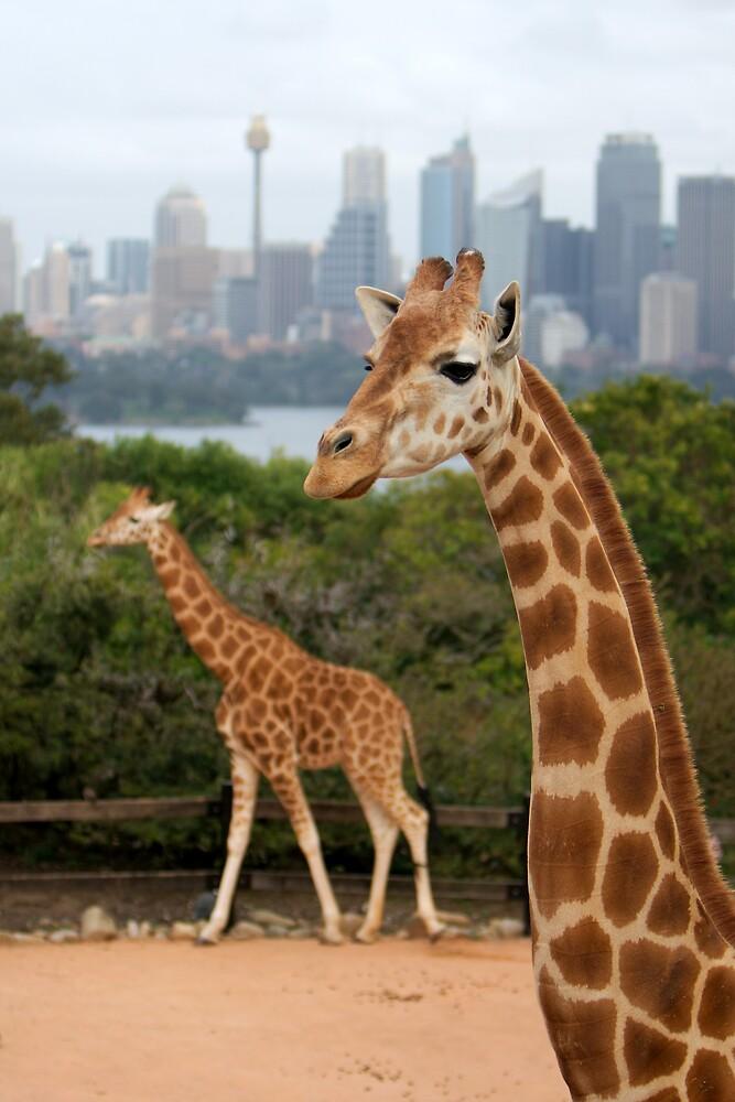 Giraffe Tower by PsiberTek