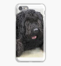 Big Shaggy Dog iPhone Case/Skin