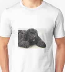 Big Shaggy Dog Unisex T-Shirt