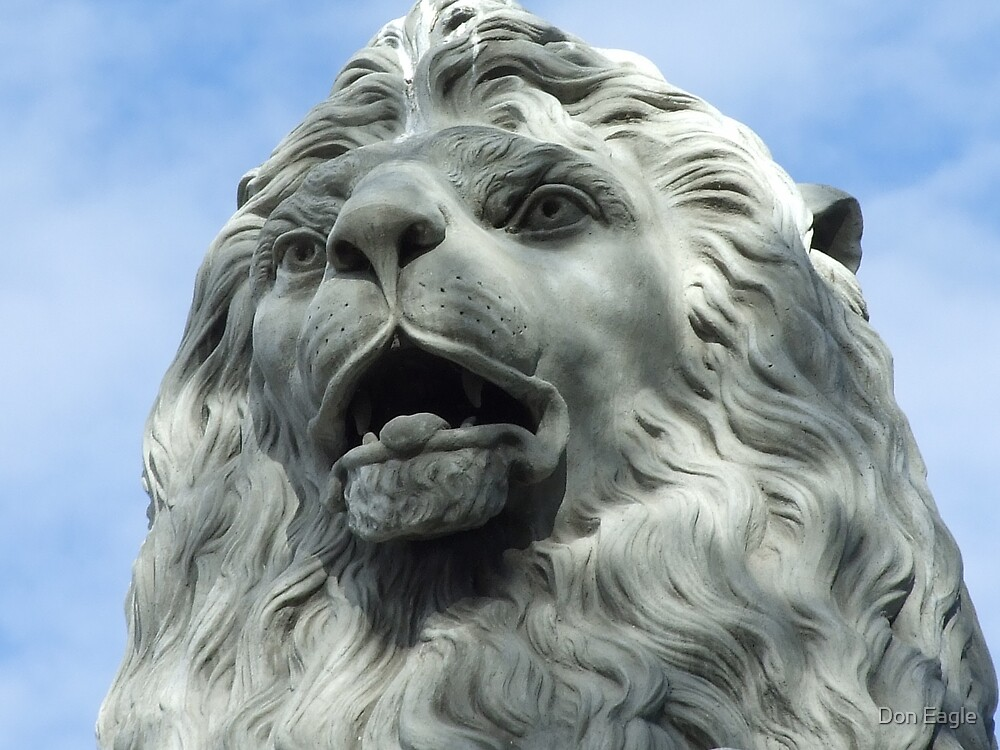 Lion's Head by Don Eagle