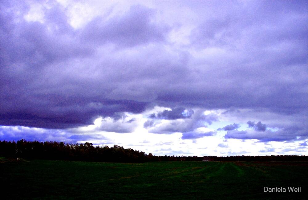 Heavy sky by Daniela Weil