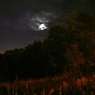 October moon by 1018photography