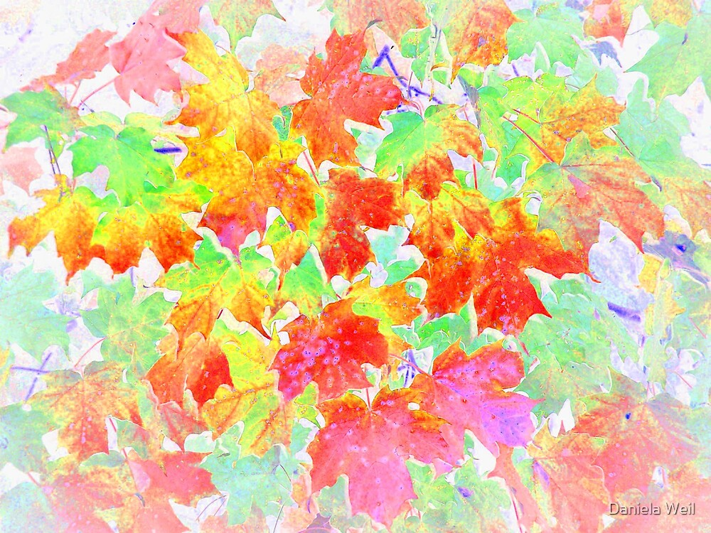 Autumn metamorphosis 6 by Daniela Weil