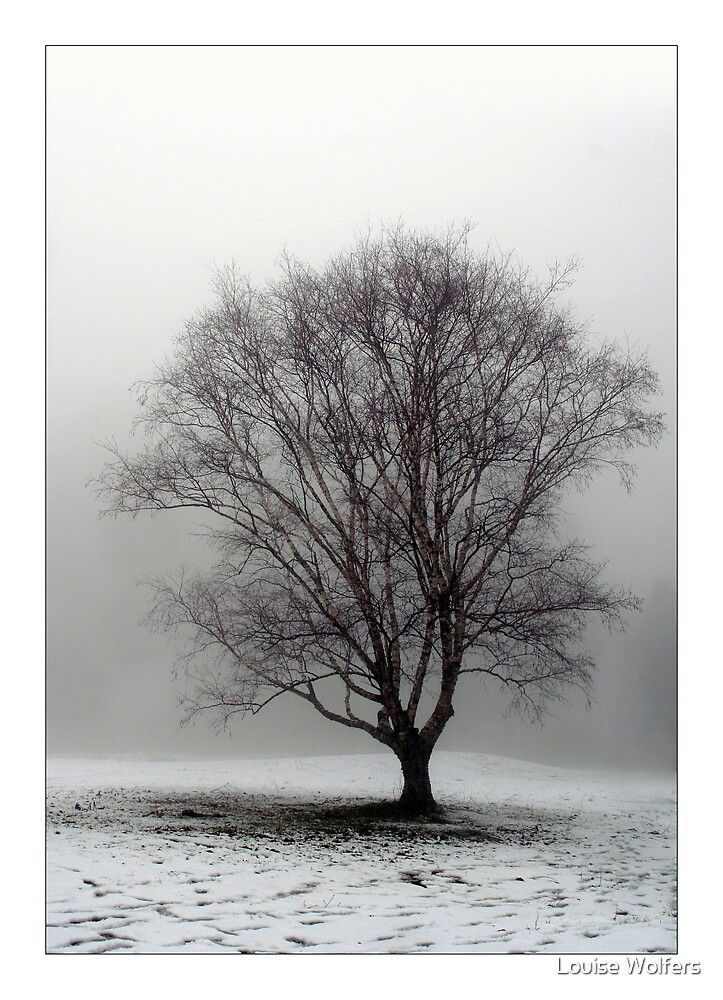 Snow Struck by Louise Wolfers