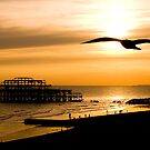 Brighton Silhouettes by nalley