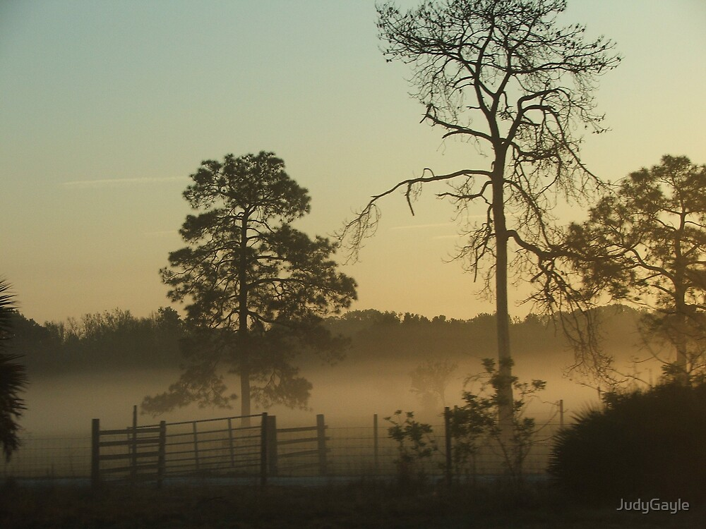Lifting Fog by Judy Gayle Waller