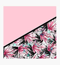 Blush Pink and Teal Abstract Tropical Leaves Photographic Print