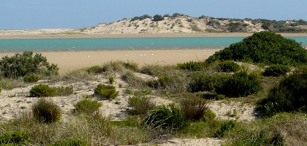 River mouth, South Australia by Kablwerk
